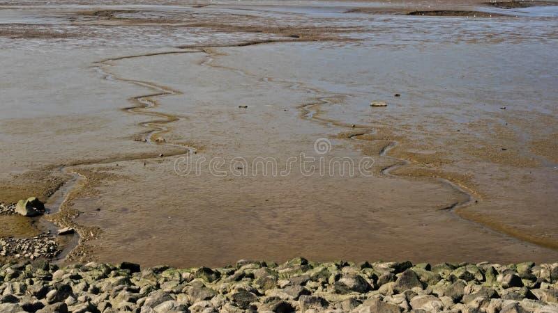 Mudflat dans la bouche de la rivière Weser à marée basse photo stock