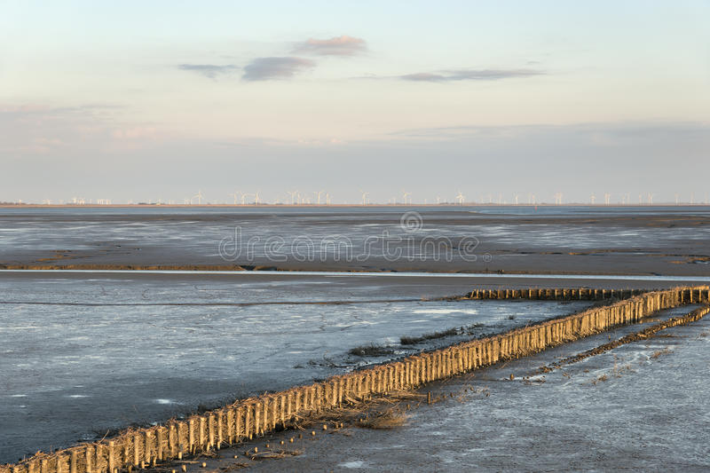 Mudflat landscape. Image of mudflat landscape with wooden poles in Northern Germany at sunset stock photography