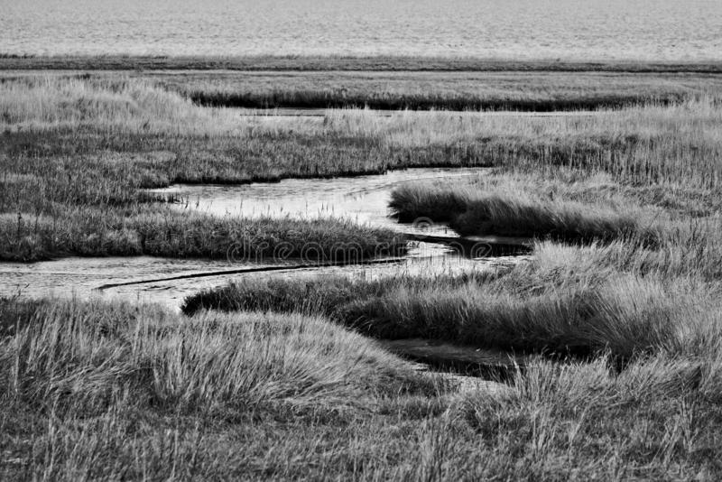 Mudflat landscape at the North Sea in Germany stock images