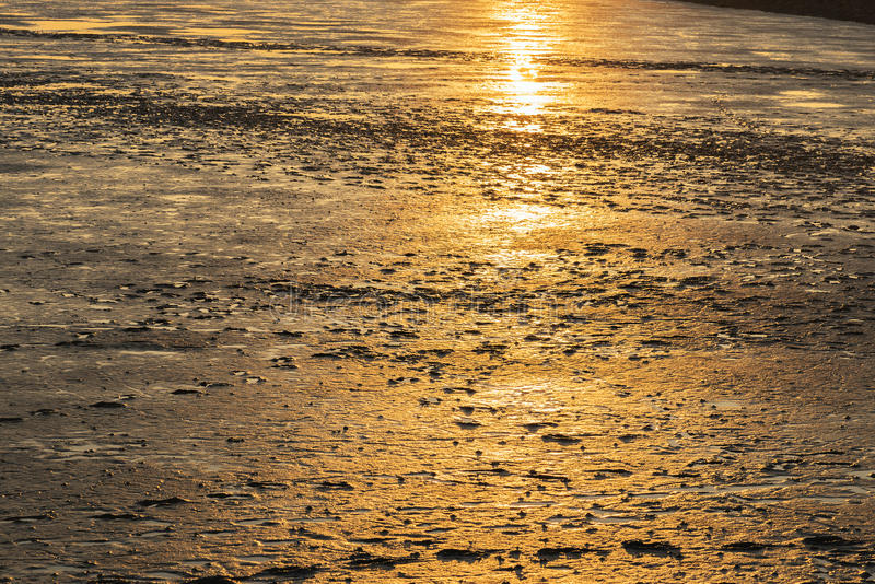 Mudflat landscape at sunset. Image of mudflat landscape in Northern Germany at sunset royalty free stock photo