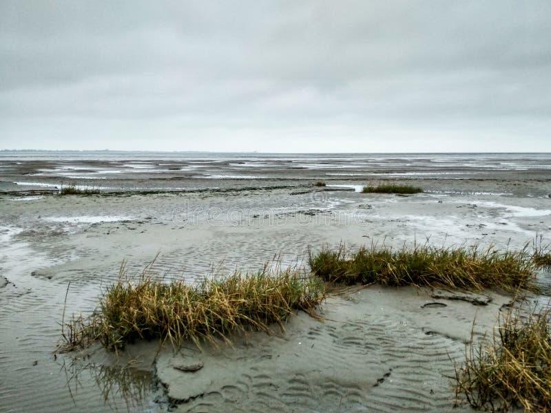 Mudflat - patrimoine mondial - site naturel dans Schillig images stock