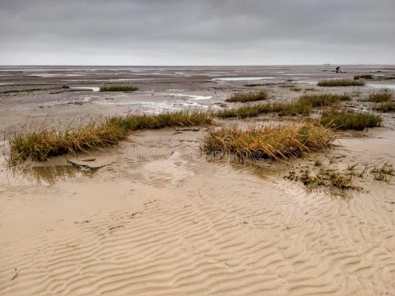 Mudflat - patrimoine mondial - site naturel dans Schillig images libres de droits