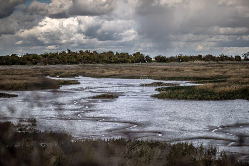 Mudflats y pantanos imagen de archivo