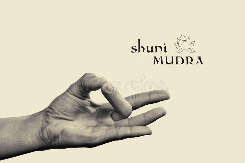 Mudra de Shuni imagem de stock