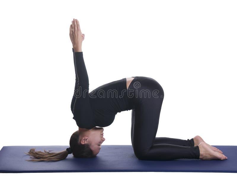 Mudra de yoga d'Upavistha - sceau posé de yoga photo stock