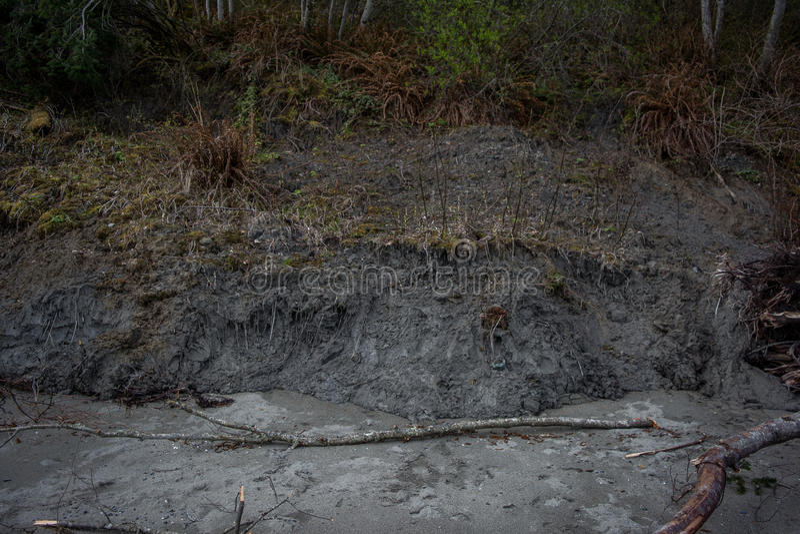 Mudslide i Stillahavs- nordvästligt arkivfoton