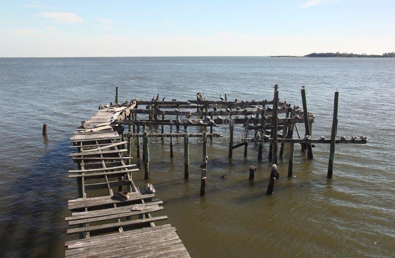 Muelle abandonado en clave del cedro, la Florida foto de archivo