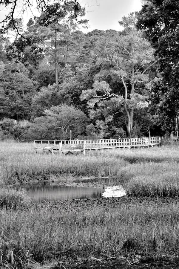 Muelle en el pantano imagenes de archivo