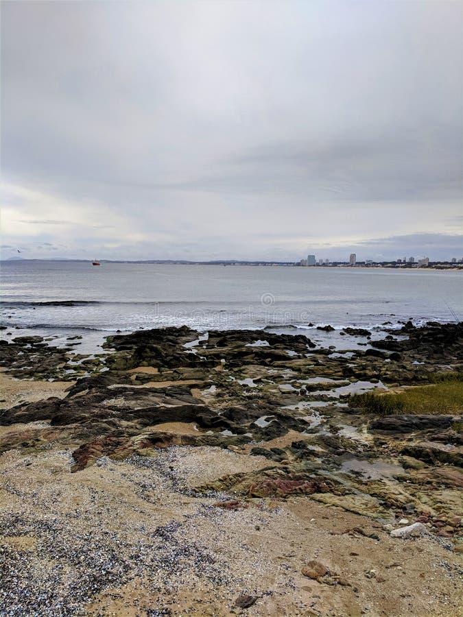 Muelle, Punta del Este, Uruguay fotos de archivo libres de regalías