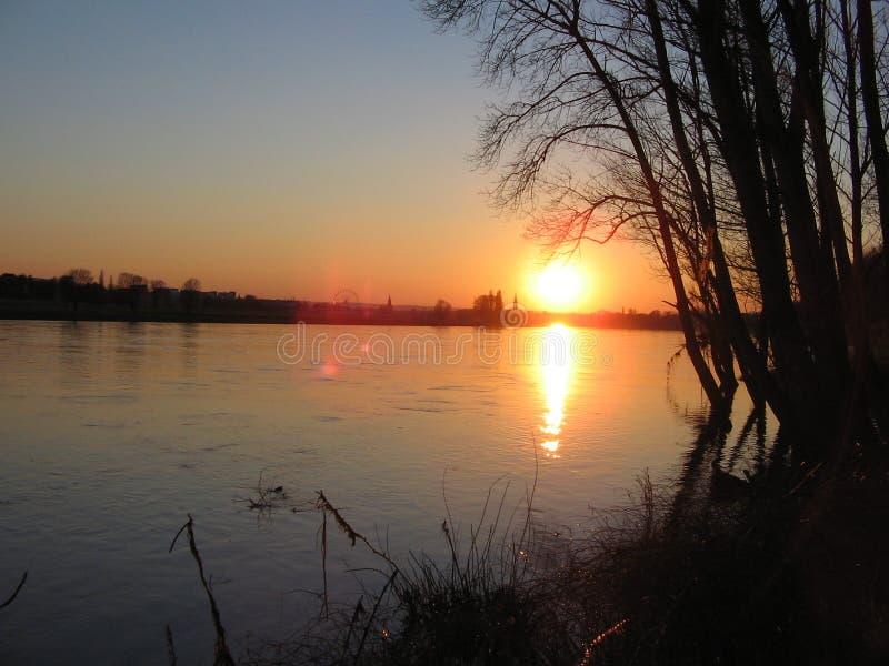 Muere Elbe foto de archivo libre de regalías