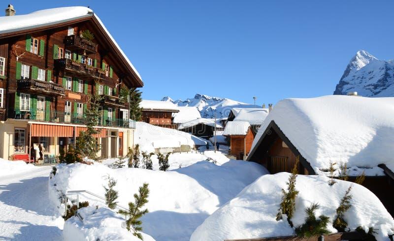 Download Muerren, Zwitserse Het Ski?en Toevlucht Stock Foto - Afbeelding bestaande uit jungfrau, boom: 29506020