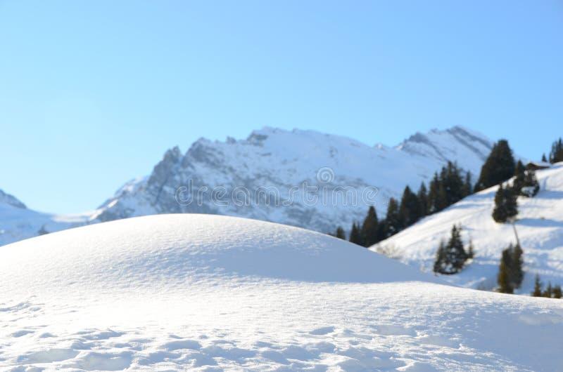 Download Muerren, Zwitserse Het Ski?en Toevlucht Stock Afbeelding - Afbeelding bestaande uit toevlucht, sparren: 29506101