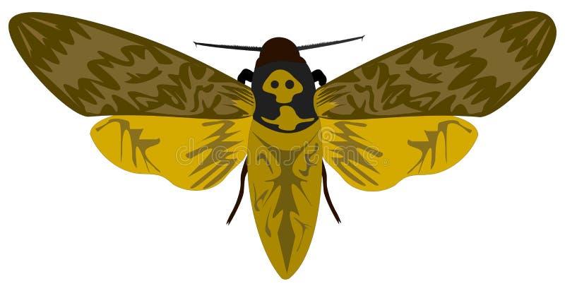Muerte-cabeza Hawkmoth libre illustration