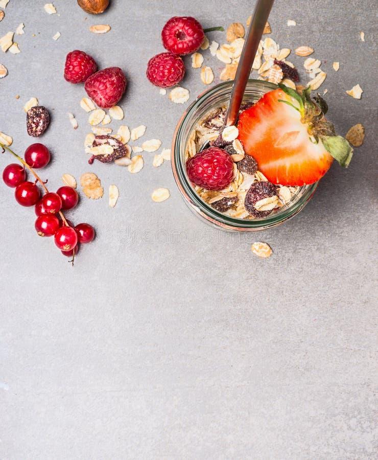 Muesli con i fiocchi di avena, le bacche matte e fresche secche di frutti, fotografie stock libere da diritti