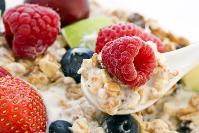 Muesli con la frutta fresca immagine stock