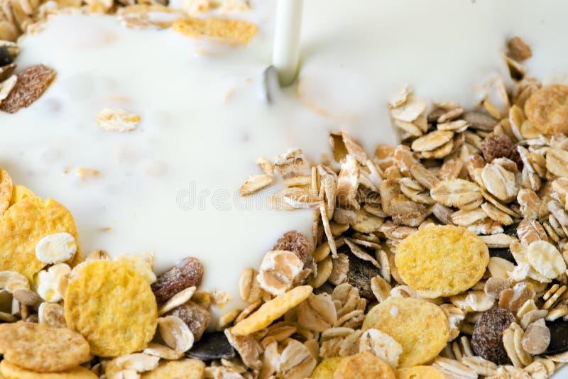 Muesli e leite imagem de stock