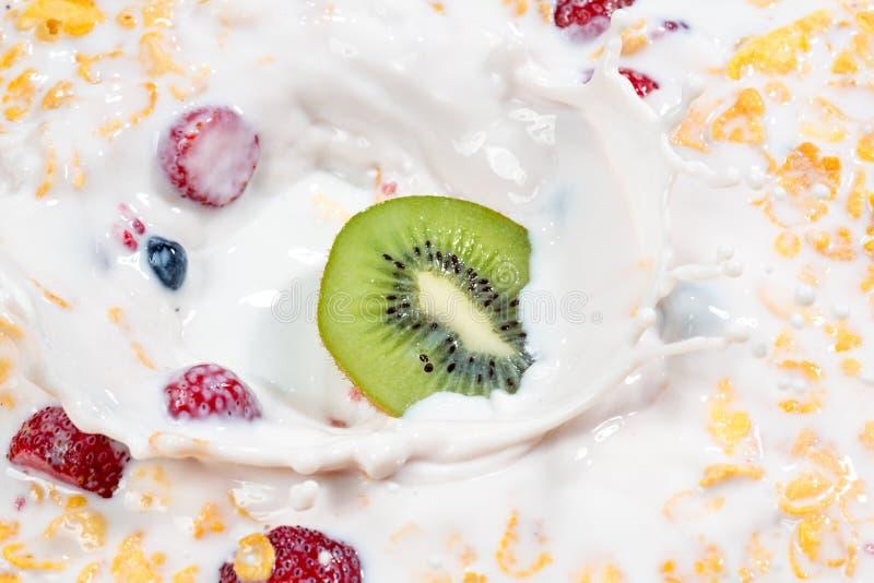 Muesli en verse bessen en vruchten met het bespatten van melk royalty-vrije stock foto