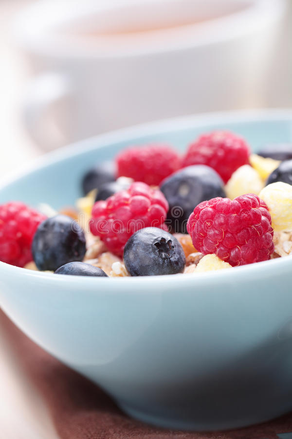 Download Muesli with fruits stock image. Image of bowl, meal, food - 22085383