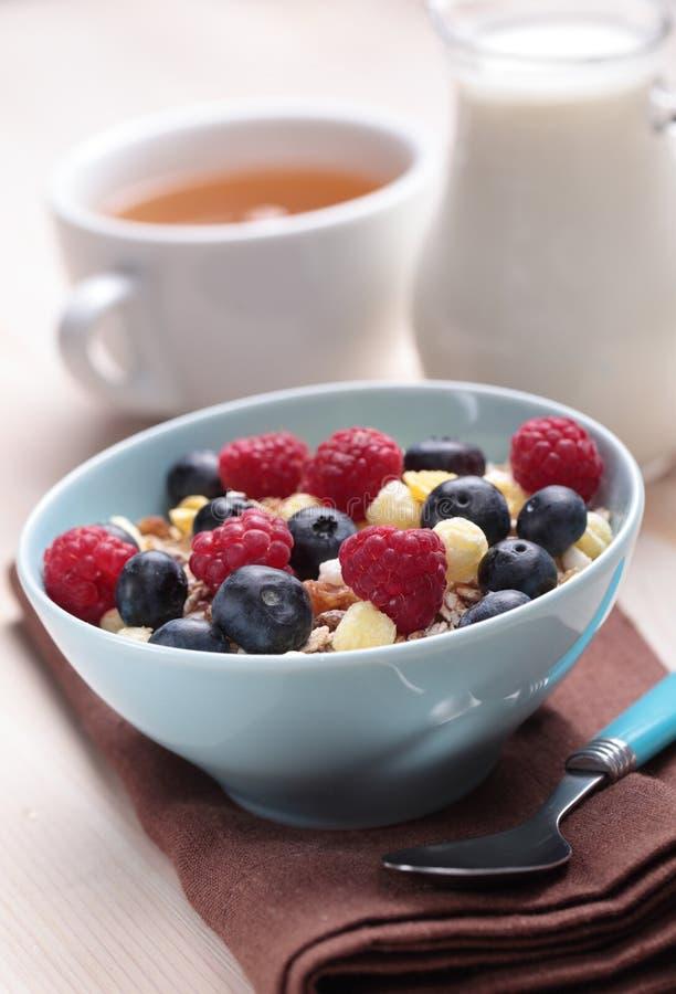Muesli with fruits stock image