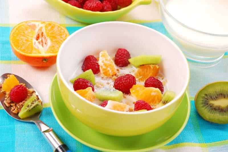 Muesli met verse vruchten als dieetvoedsel stock fotografie