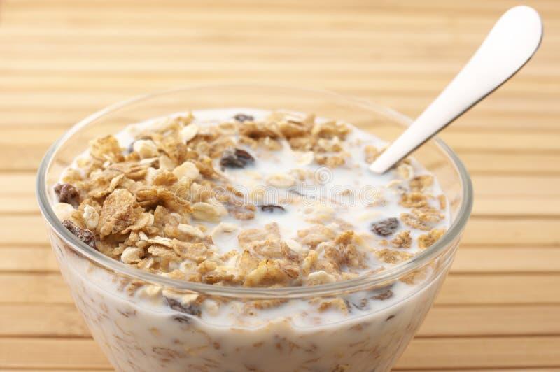 Download Muesli with milk stock photo. Image of health, granola - 14036752