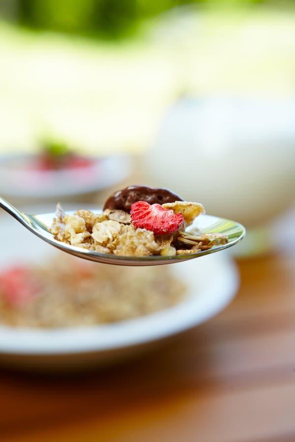 Muesli mit frischen Früchten als Diätnahrung stockbilder