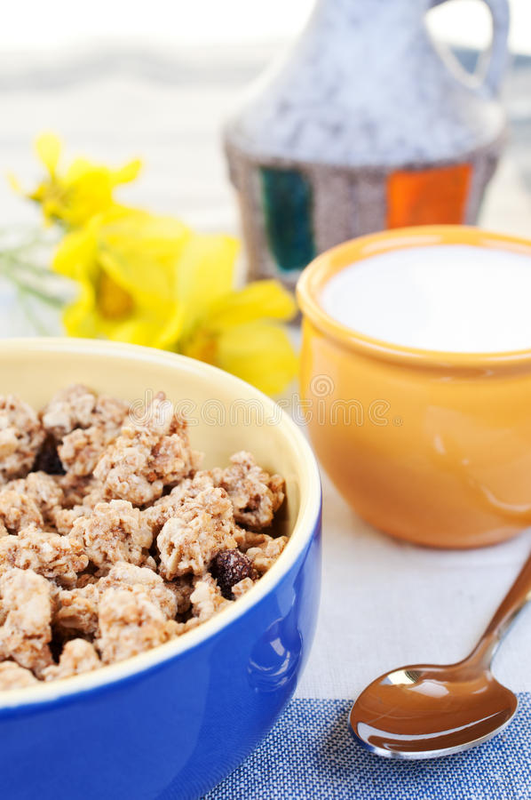 Download Muesli With Raisins Stock Images - Image: 23242714