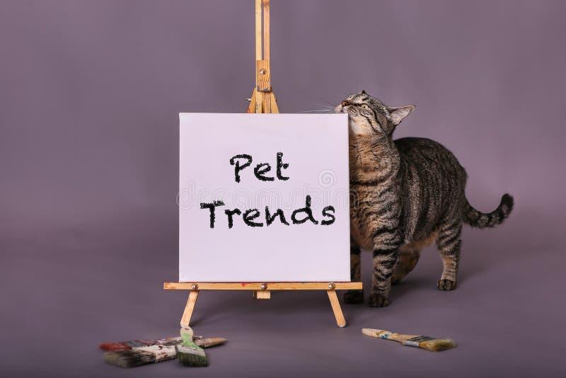 Muestra blanca de la lona con las tendencias del animal doméstico pintadas en muestra que hace una pausa del gato negro de la pin imagenes de archivo