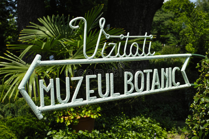 Muestra botánica del museo de Bucarest imágenes de archivo libres de regalías