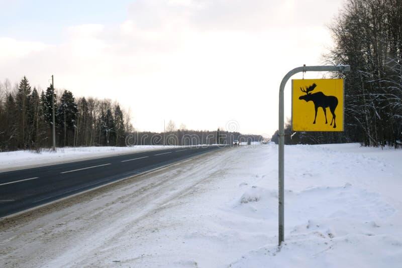 Muestra de camino Los alces son animales salvajes fotos de archivo