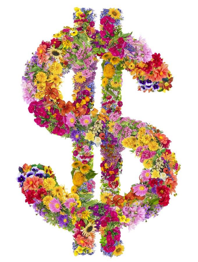 Muestra de dólar de las flores del verano fotografía de archivo libre de regalías