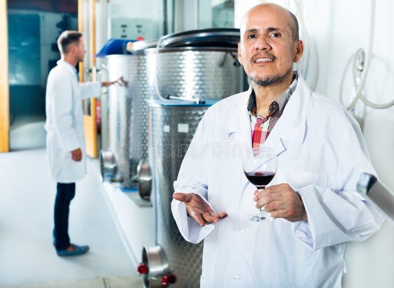 Muestra de examen del Winemaker de vino imagen de archivo libre de regalías
