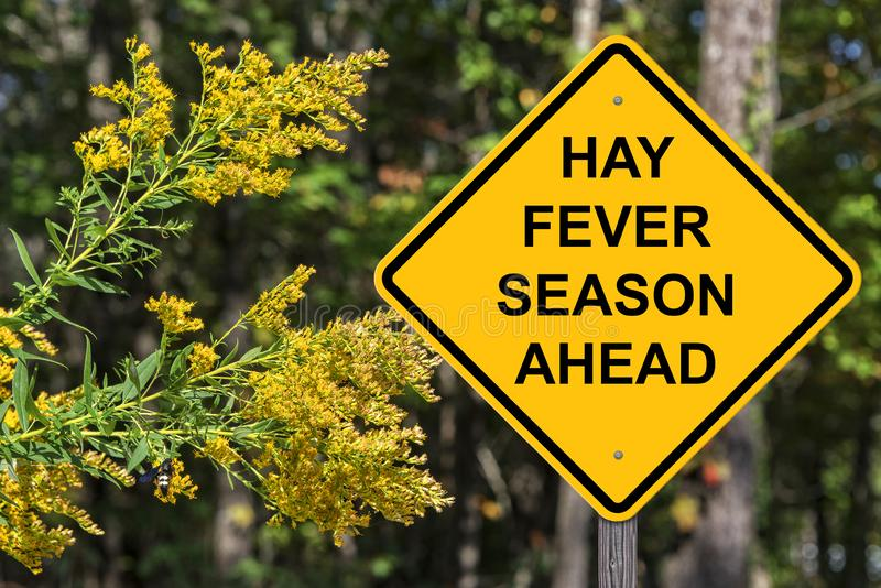 Muestra de Hay Fever Season Ahead Warning fotos de archivo
