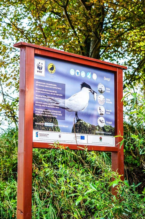 Muestra de la información de los pájaros fotografía de archivo