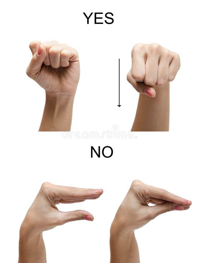 Muestra de la mano de la mujer NINGÚN lenguaje de signos del americano del ASL del SÍ fotos de archivo