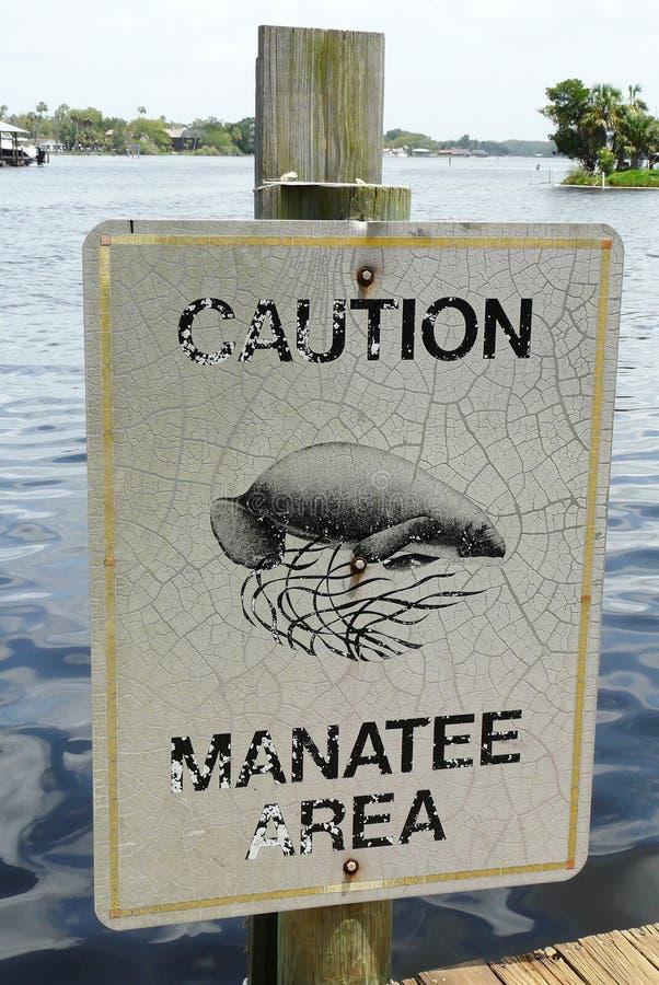 Muestra de la precaución del Manatee imagen de archivo libre de regalías