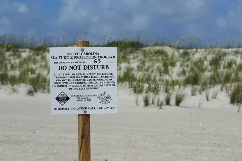 Muestra de la protección de la tortuga de mar en la playa de la isla de la cabeza calva, Carolina del Norte, los E.E.U.U. imagen de archivo libre de regalías