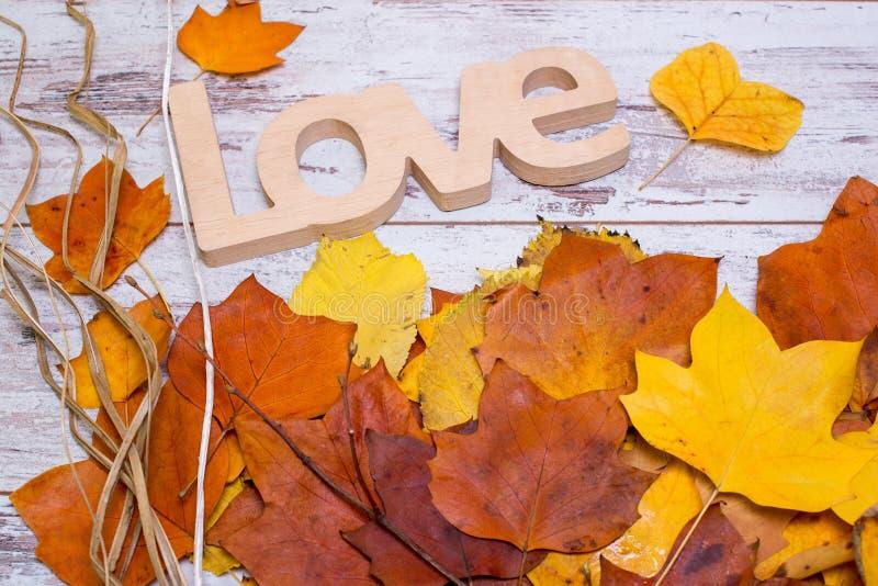 Muestra de madera del amor en fondo de madera blanco lamentable, con las hojas amarillas Concepto del otoño Visión superior imagen de archivo libre de regalías