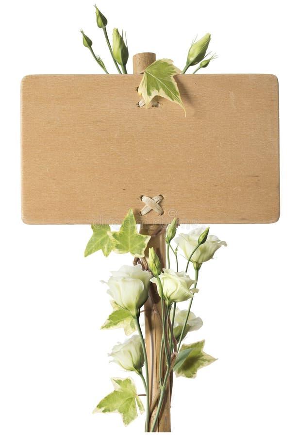 Muestra de madera en blanco con las flores de las rosas verdes fotografía de archivo libre de regalías