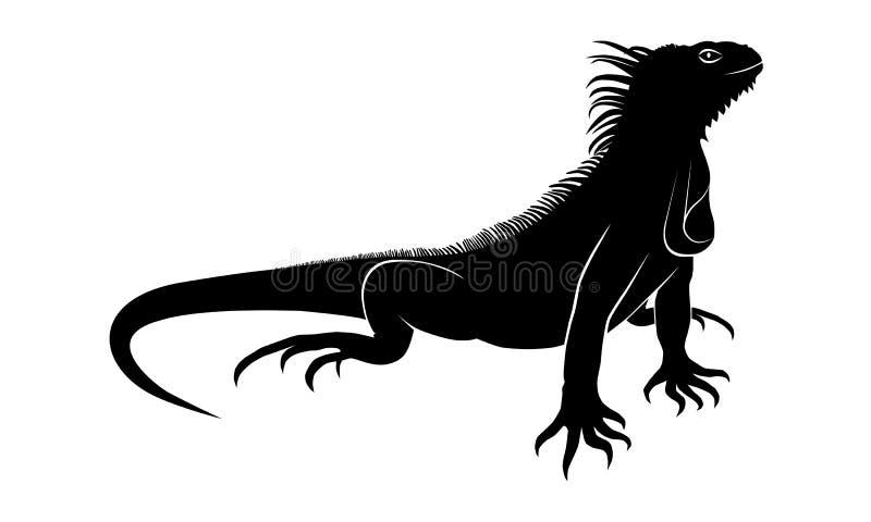 Muestra del negro de la iguana stock de ilustración