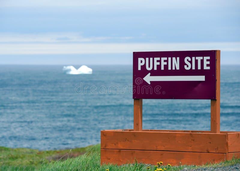 Muestra del sitio del frailecillo con el iceberg en Océano Atlántico fotos de archivo