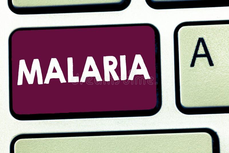Muestra del texto que muestra malaria Mosquito peligroso para la vida de la foto conceptual llevado períodos de la enfermedad de  fotos de archivo libres de regalías