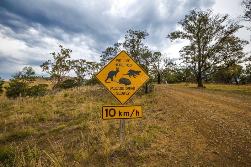 Muestra tasmana de la travesía de la fauna fotos de archivo libres de regalías
