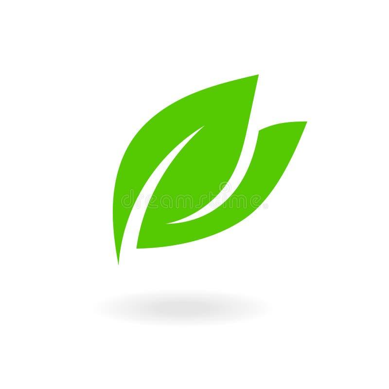 Muestra verde de la hoja Iconos planos de las hojas Bio dise?o de concepto floral de la planta y del bosque del ?rbol libre illustration