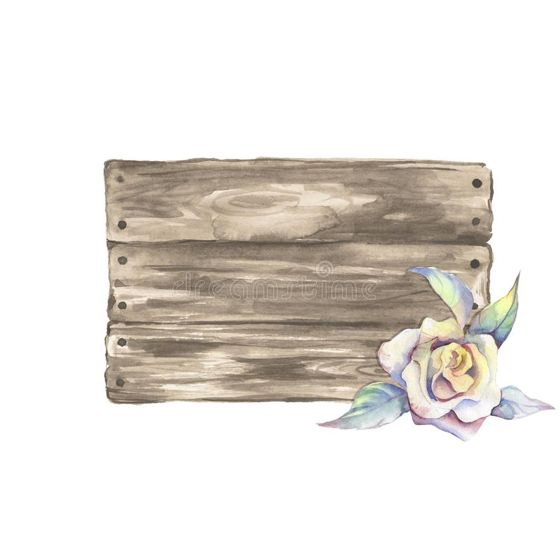 Muestra y flor de madera Ilustración de la acuarela Elem dibujado mano libre illustration