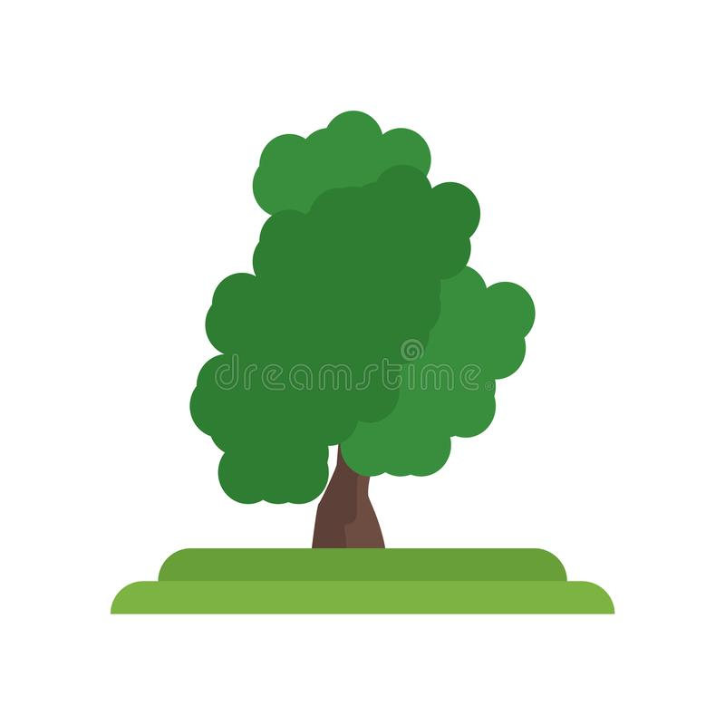 Muestra y símbolo del vector del icono del árbol de sasafrás aislados en el CCB blanco stock de ilustración