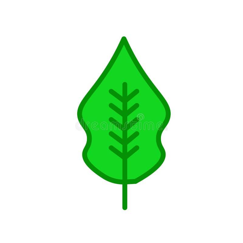 Muestra y símbolo del vector del icono de la hoja de la magnolia aislados en la parte posterior del blanco ilustración del vector