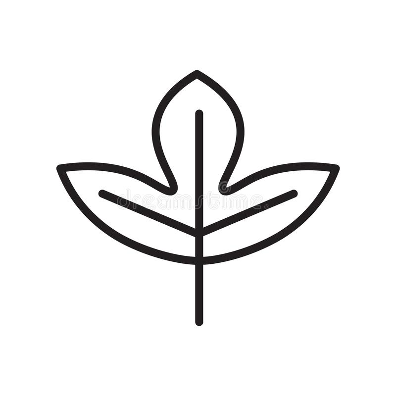 Muestra y símbolo del vector del icono de la hoja del sasafrás aislados en el CCB blanco ilustración del vector
