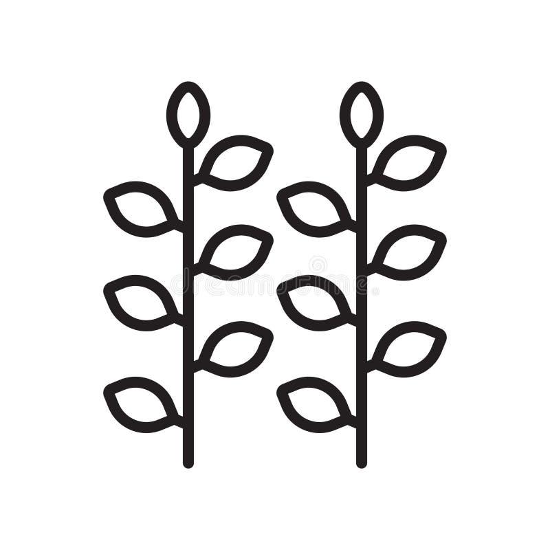 Muestra y símbolo del vector del icono del viñedo aislados en el backgroun blanco ilustración del vector