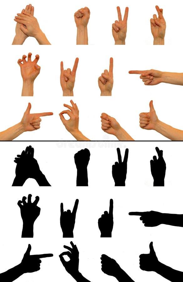 Muestras de la mano stock de ilustración